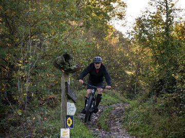 Downhill action for biker in Enkirch